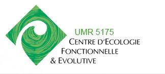 Logo_CEFE_2013.jpg