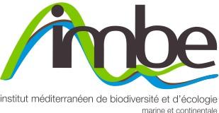 Logo_IMBE_2013.jpg